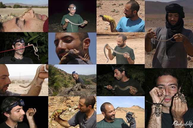 Algunas escenas de bicheo en Marruecos, Sáhara y Sudamérica.