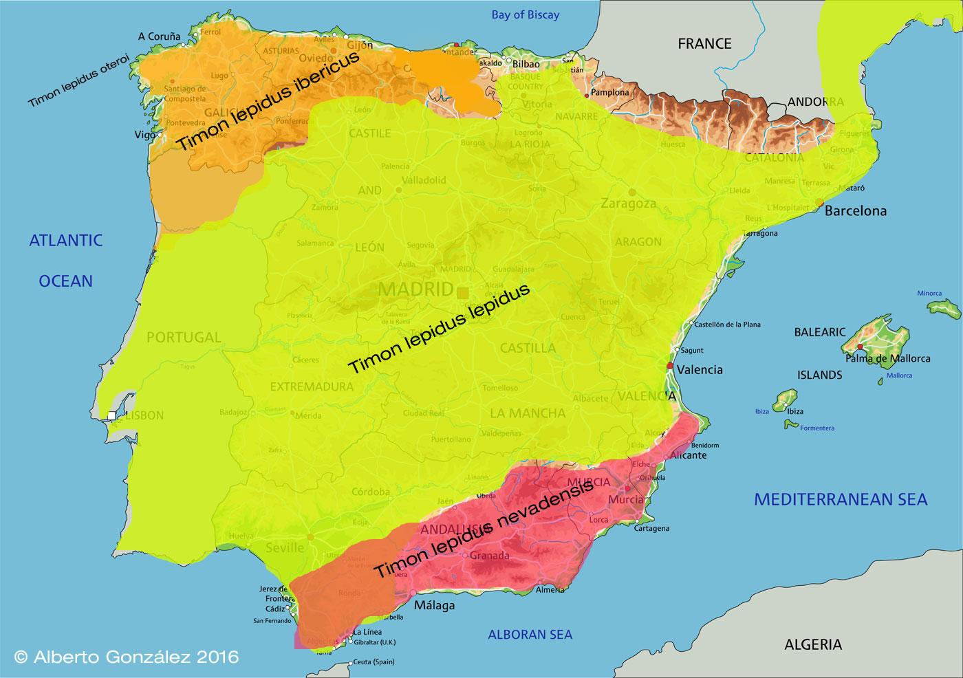 mapa-lagarto-ocelado-península-ibérica