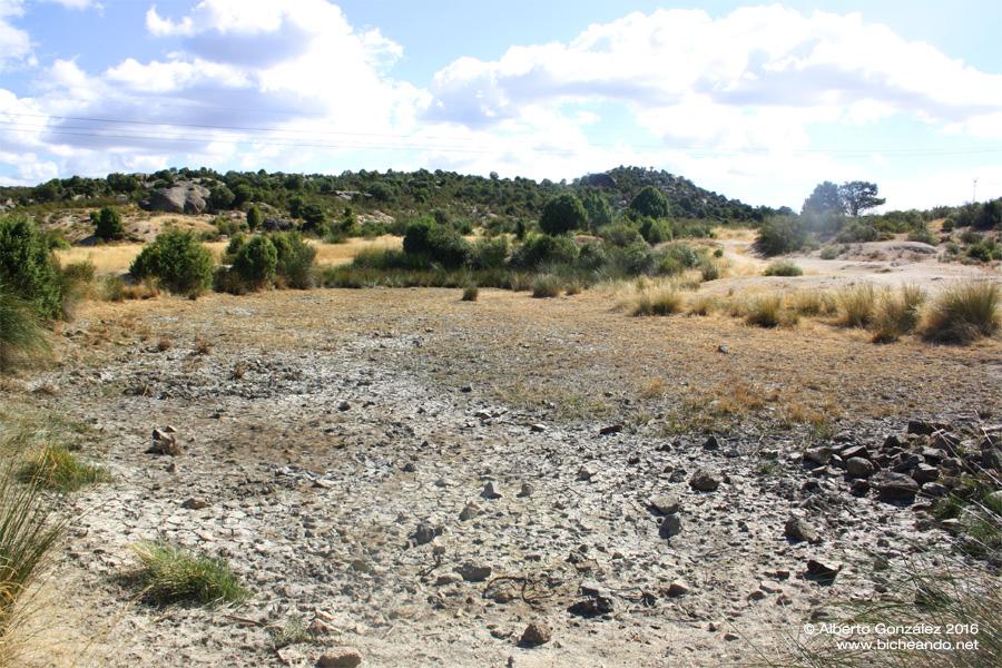 laguna temporal completamente seca en agosto 2016 salvamento de gallipatos