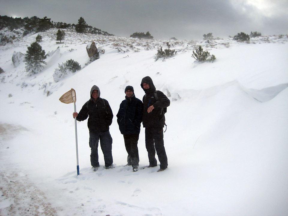 Muestreando salamandras en Murcia con Andrés Egea (centro), David Buckley (derecha) y Ernesto Recuero (autor de la foto)