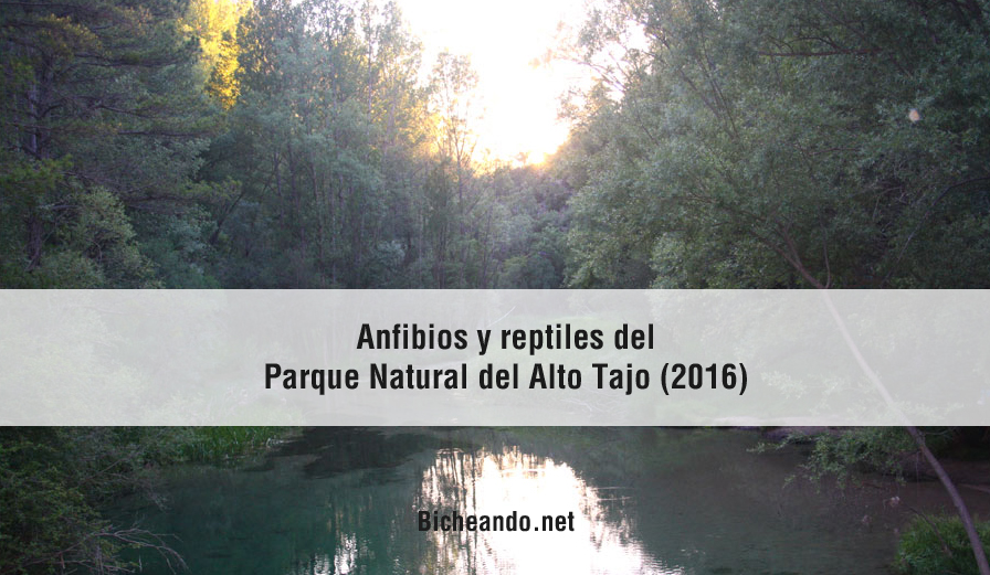 alto-tajo-bicheando-portada-Parque-Natural-del-AltoTajo
