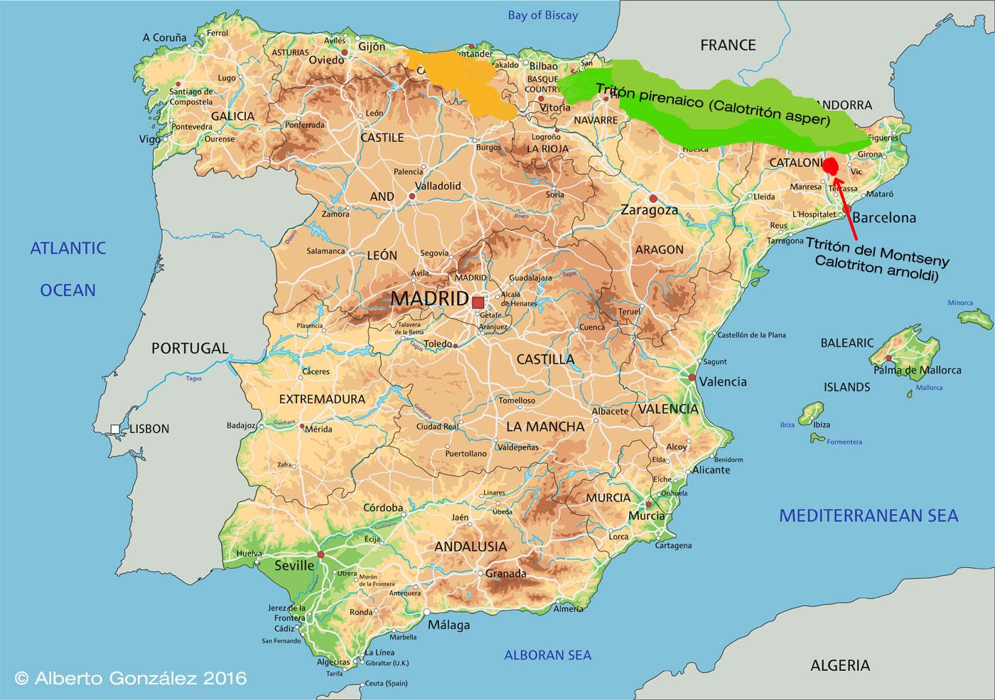 mapa-distribucion-triton-pirenaico-calotriton-asper-y-calotriton-arnoldi