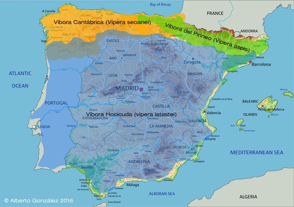 Mapa de distribución de las víboras de la Península Ibérica