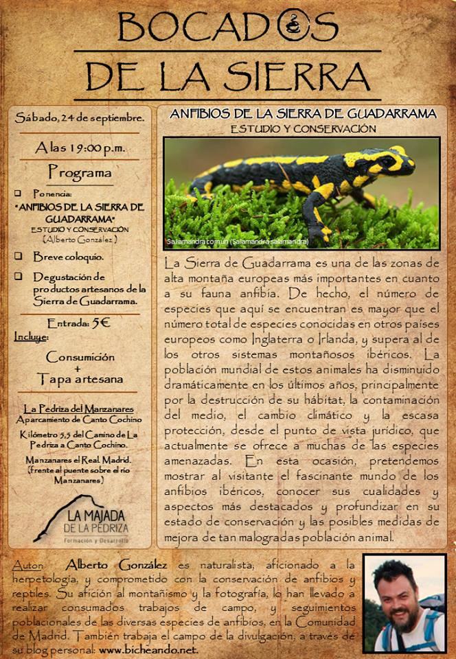 anfibios de la sierra de guadarrama