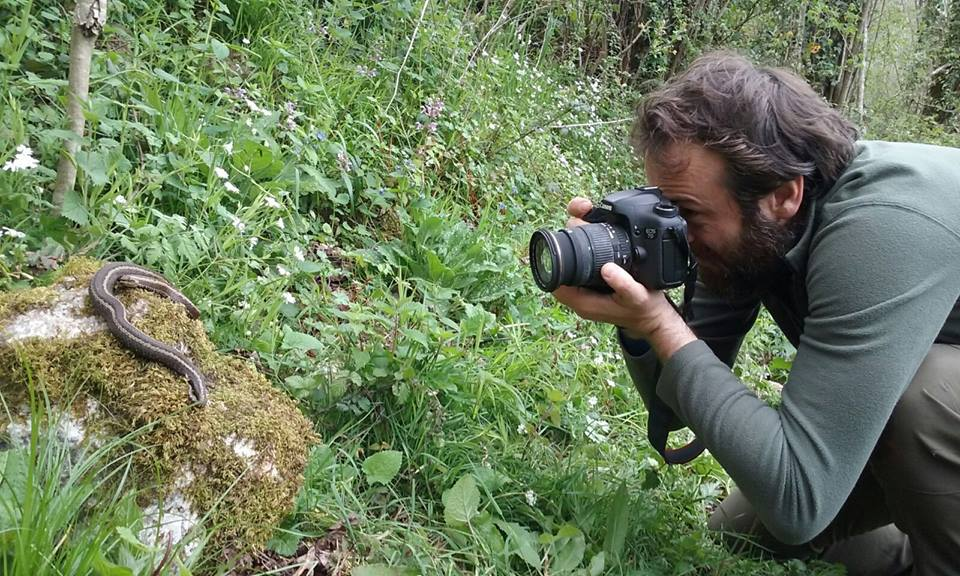 Javi Roces fotografiando una víbora cantábrica...