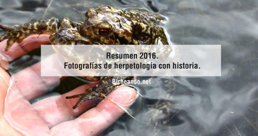 Resumen-2016.-Fotografías-de-herpetología-con-historia
