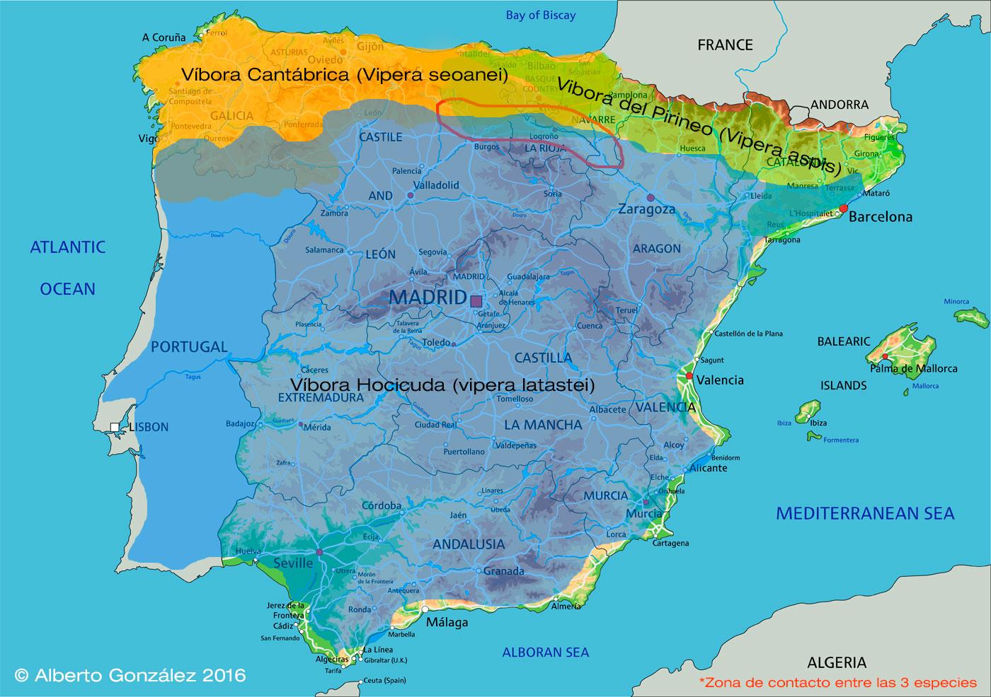 Mapa aproximado de distribución de las especies víboras península ibérica