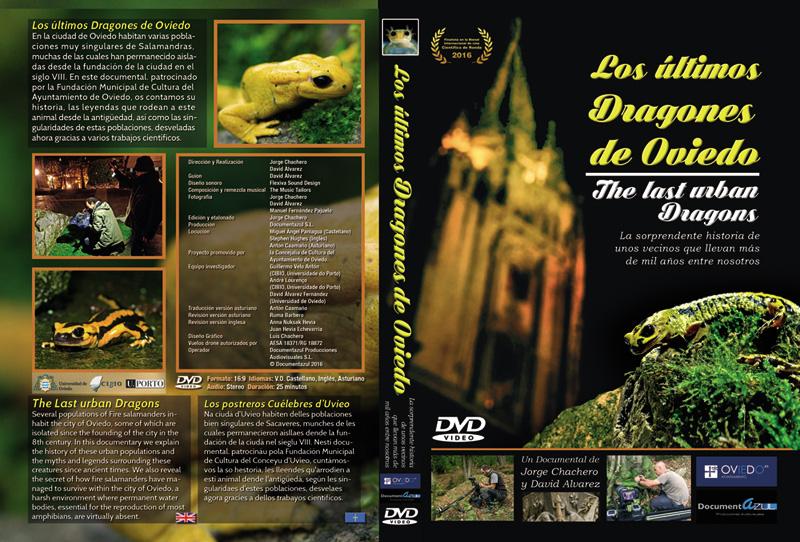 los ultimos dragones de oviedo