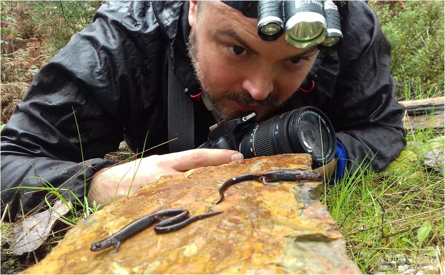 alberto con salamandra rabilarga