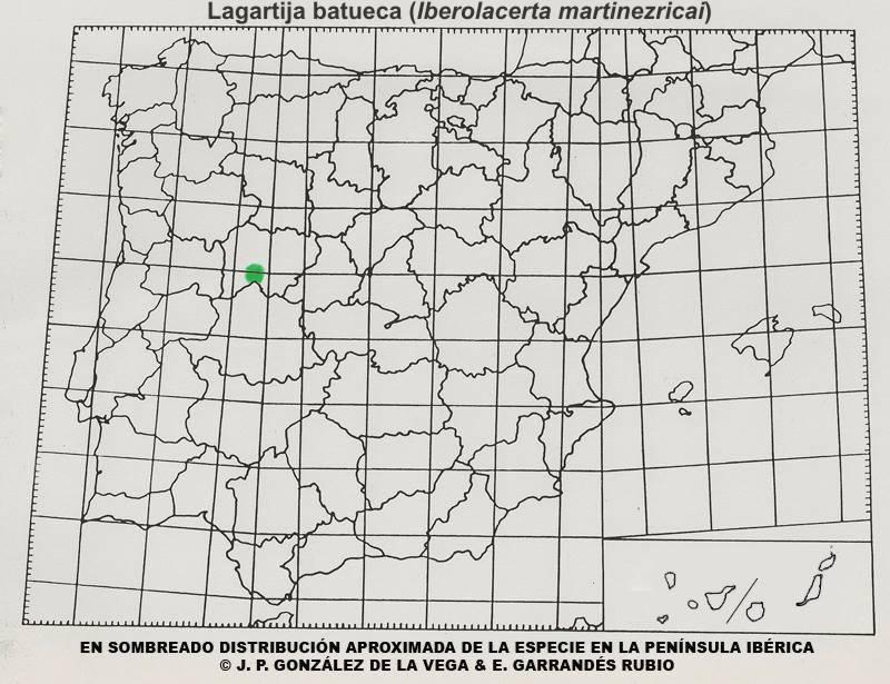Mapa distribucion Lagartija batueca (Iberolacerta martinezricai)
