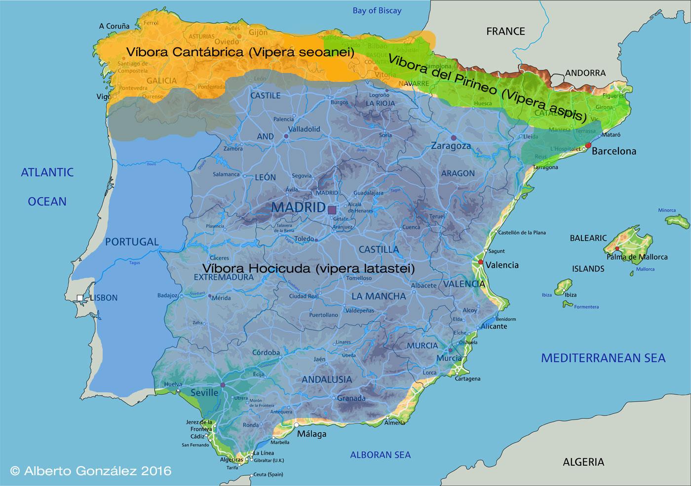 mapa distribución víboras en la Península Ibérica.