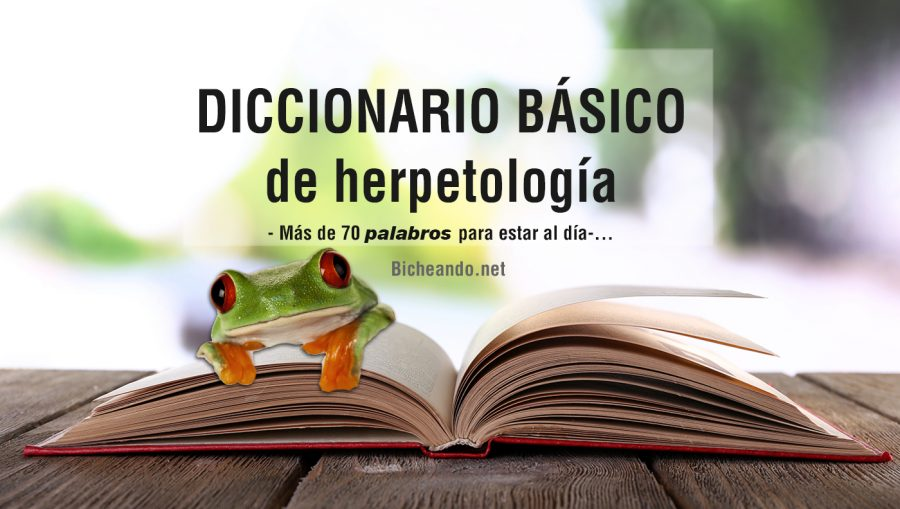 diccionario-de-herpetología