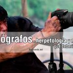 fotografos-herpetologia-naturaleza