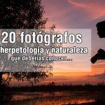 fotografos-herpetologia-naturaleza-02