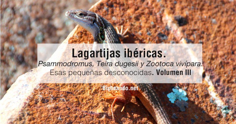 largatijas-ibericas-volumen-III