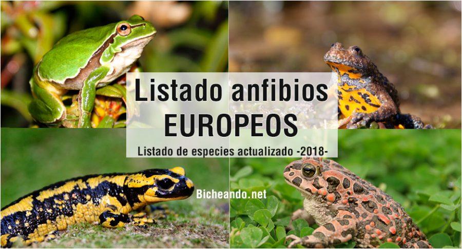 Listado especies anfibios europa