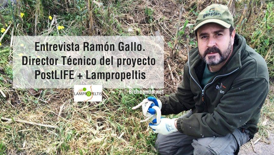 Entrevista Ramón Gallo Barneto