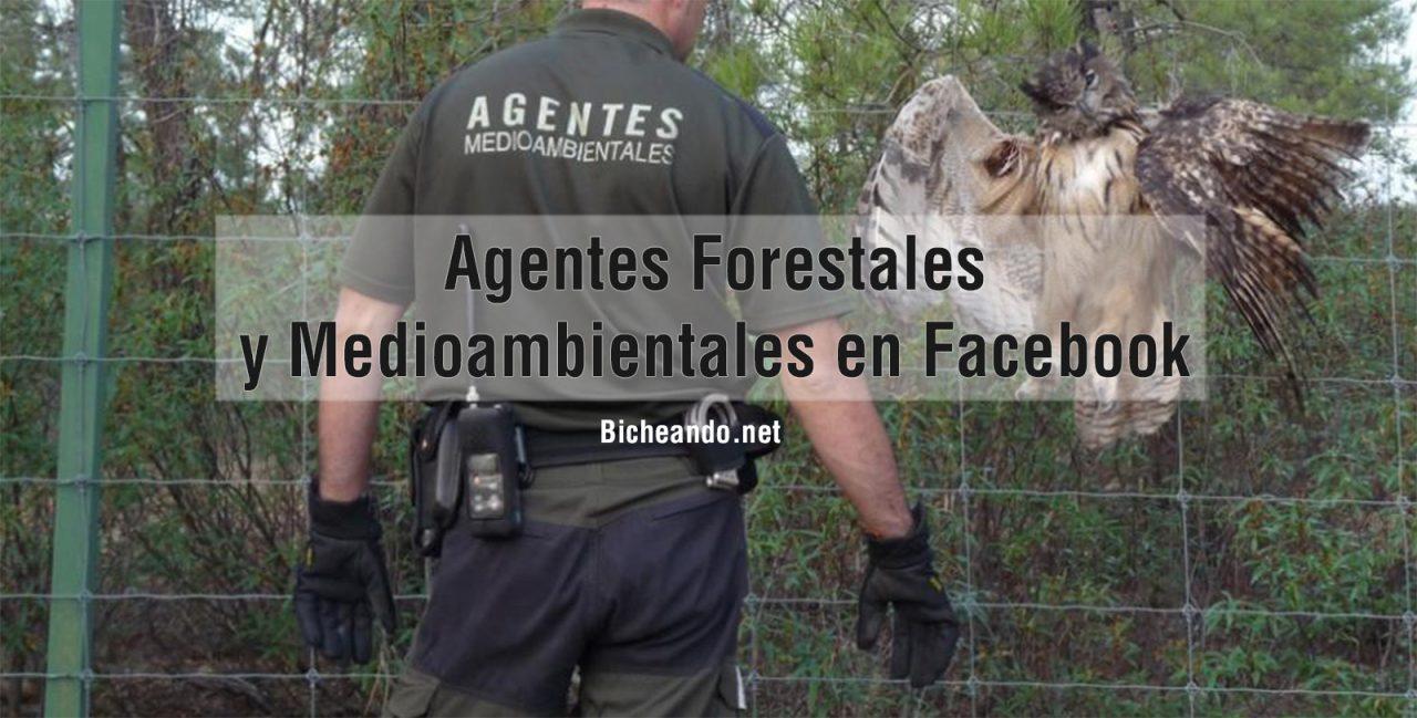 Páginas-Agentes-Forestales-facebook