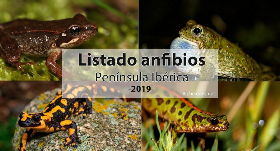 Listado anfibios península iberica 2019 españa