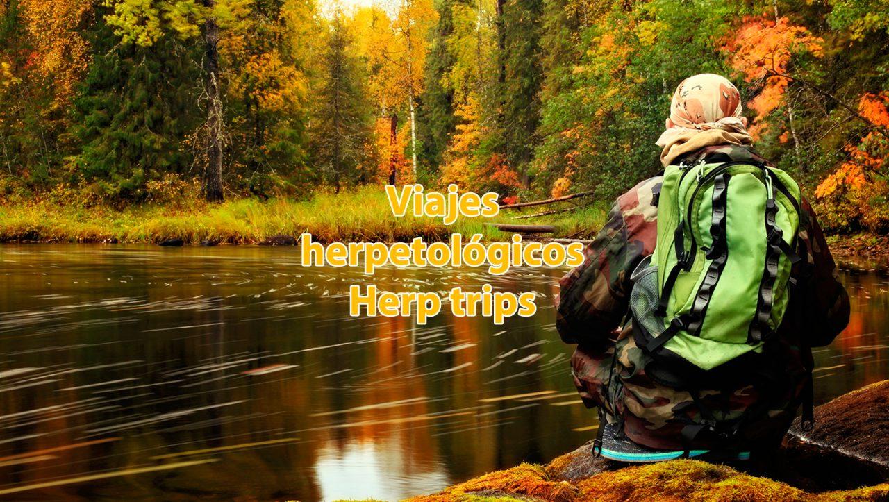 herp trips viaje herpetología