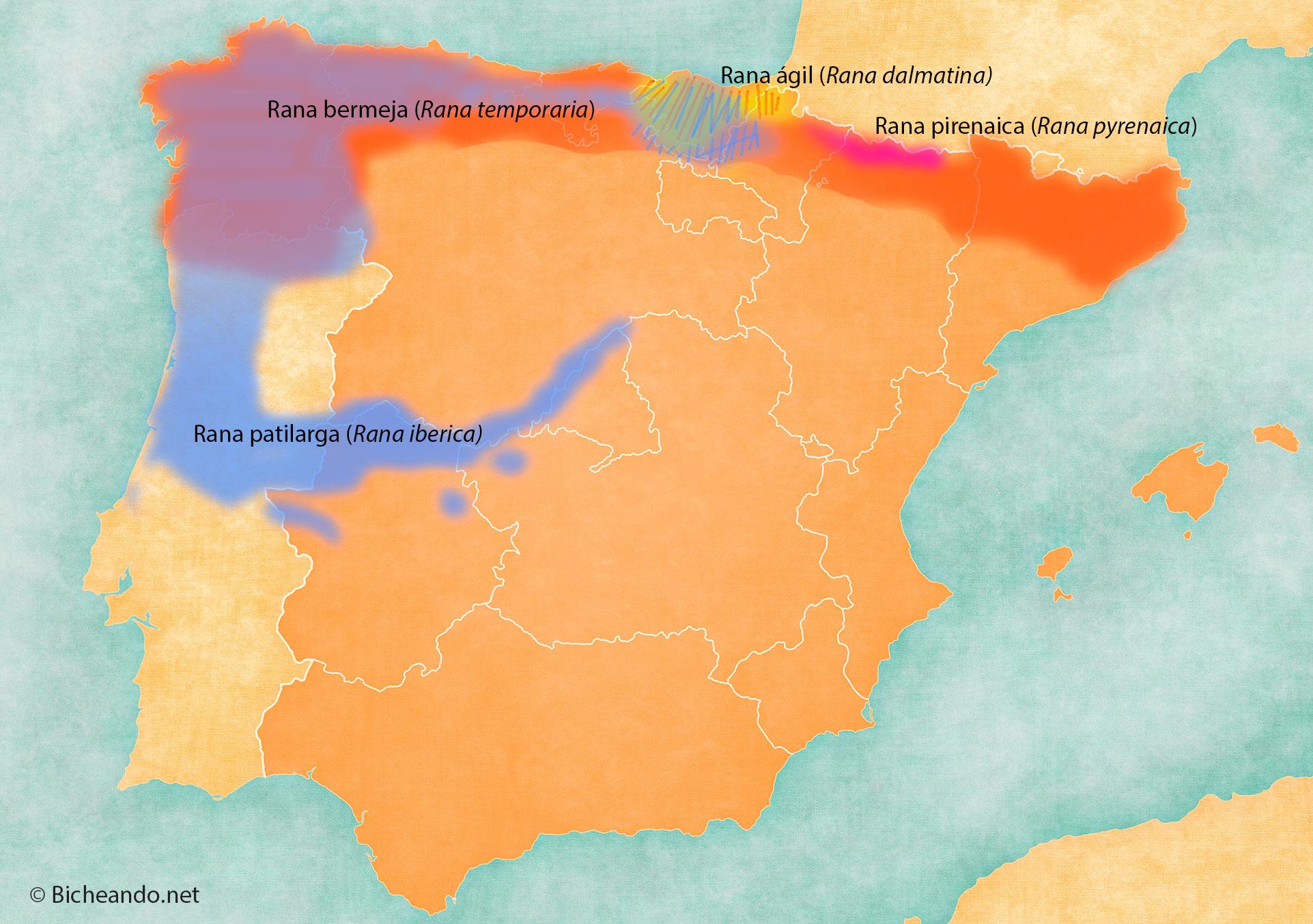 Mapa distribución ranas pardas peninsula iberica