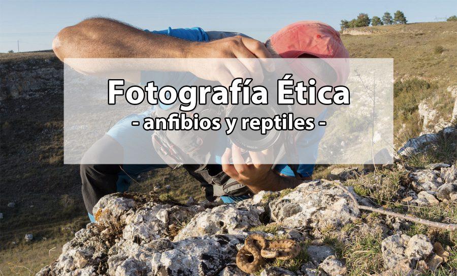 fotografía ética anfibios reptiles