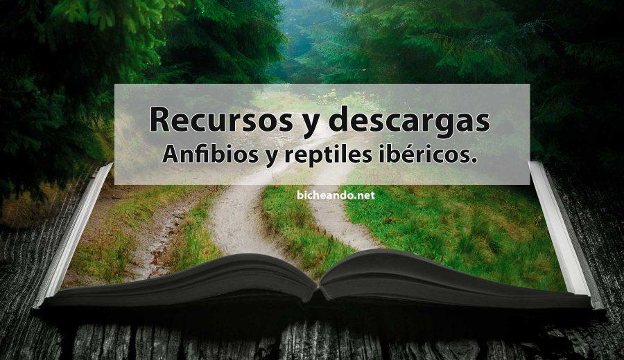 Recursos y descargas anfibios y reptiles pdf