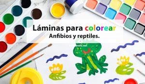 Láminas de anfibios y reptiles para colorear