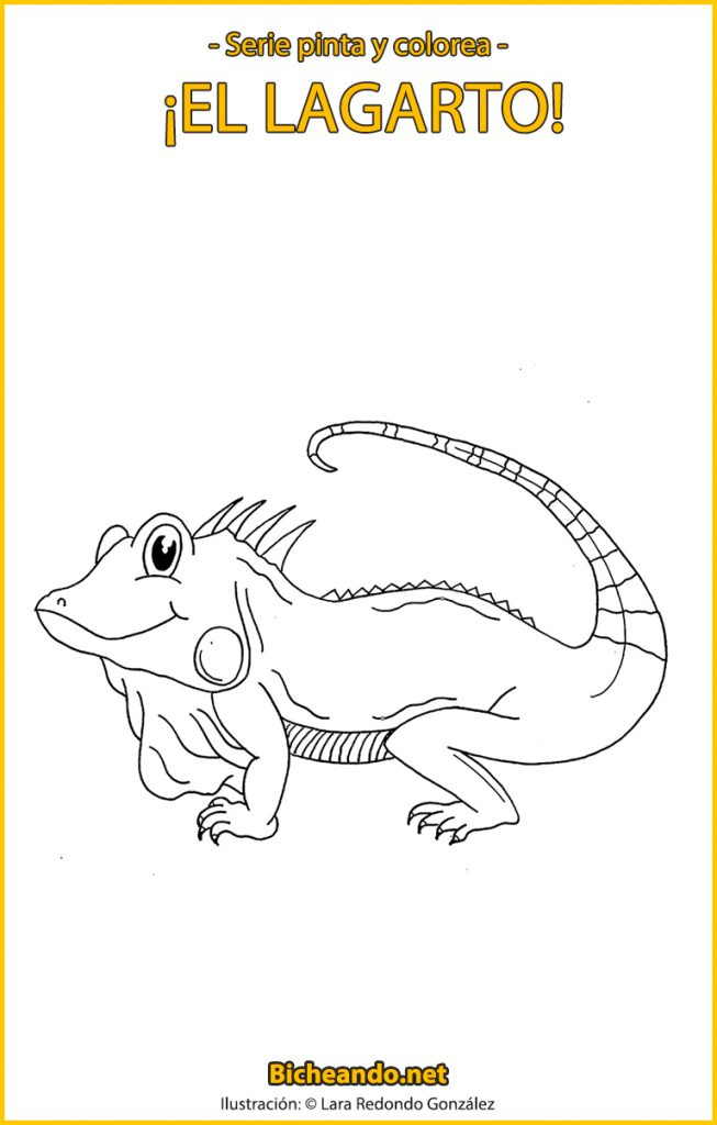 lámina para colorear lagarto