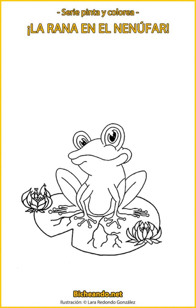 lámina para colorear rana nenúfar