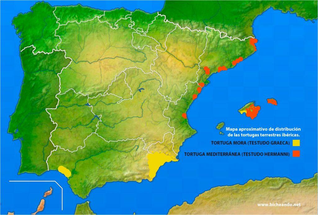 mapa distribución tortuga mora y tortuga mediterránea