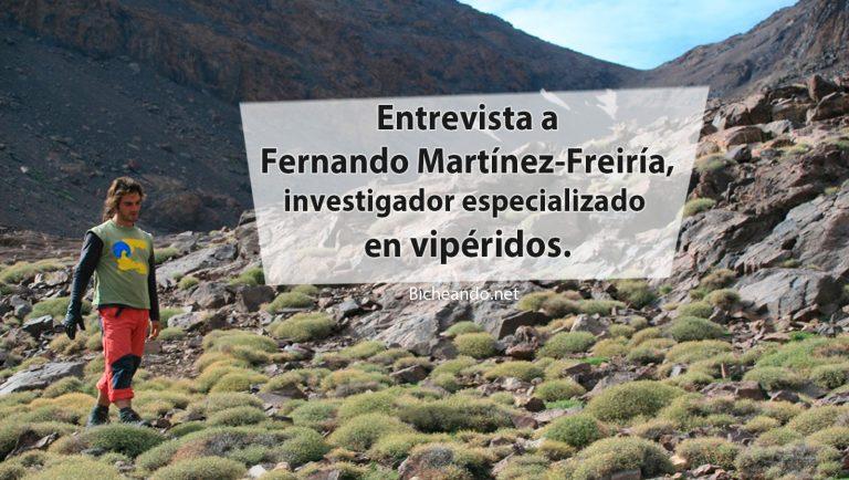 entrevista a Fernando Martínez-Freiría
