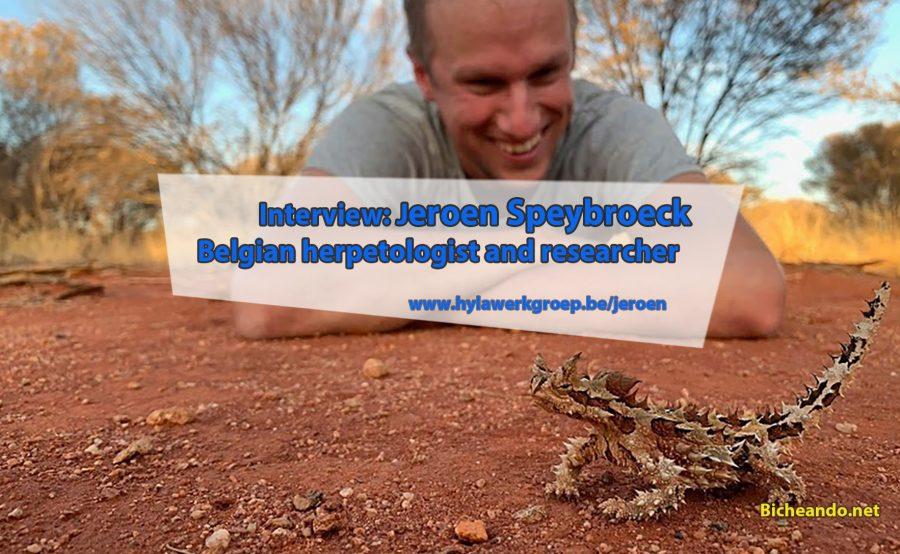 Interview Jeroen Speybroeck