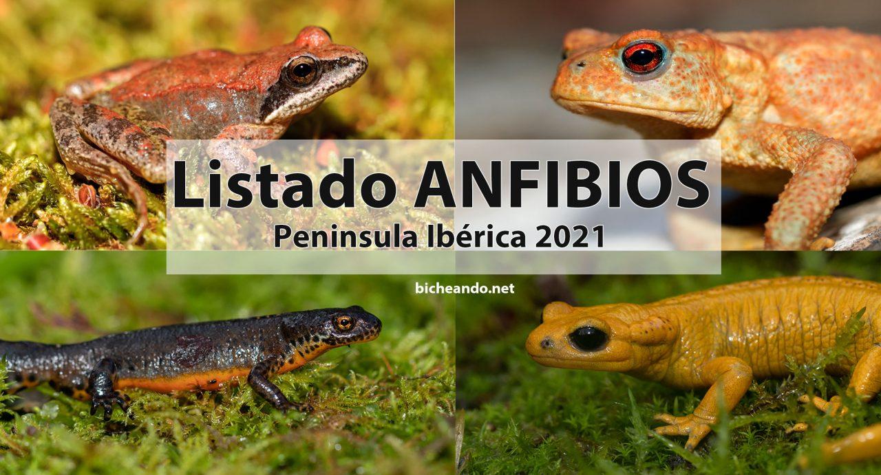 especies anfibios península iberica portada
