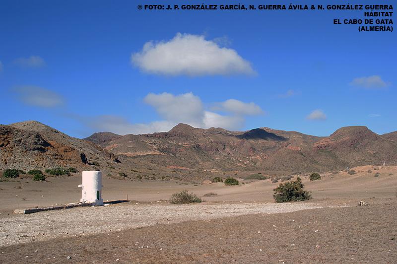 FOTO 3 Cabo de Gata. Juan Pablo González de la Vega