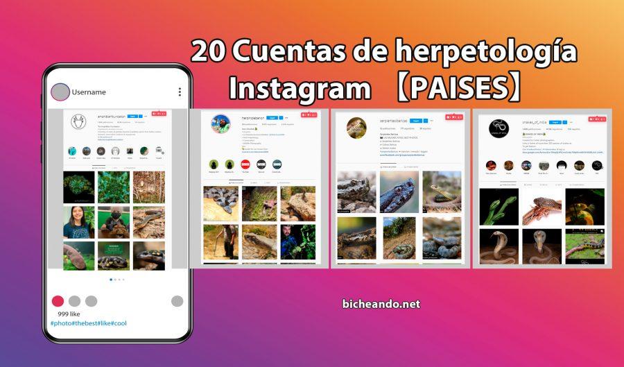 cuentas Instagram herpetologia